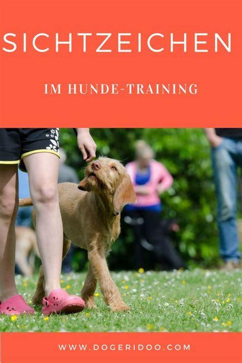 Glueckliche Haustiere Sauberkeit Und Erziehung by Sichtzeichen Im Hunde Hundehunde Hunde Hunde