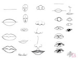 Steps How to Draw a Face Beginners