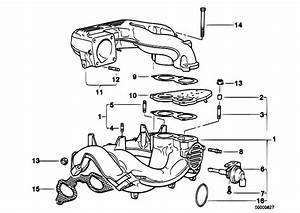 Original Parts For E36 318i M43 Sedan    Engine   Intake