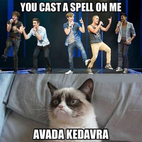 Grumpy Cat Meme Clean - clean memes
