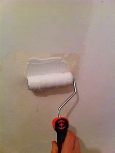 Enduire Un Plafond Au Rouleau : comment poser l 39 enduit de lissage au rouleau la r ponse est sur ~ Farleysfitness.com Idées de Décoration