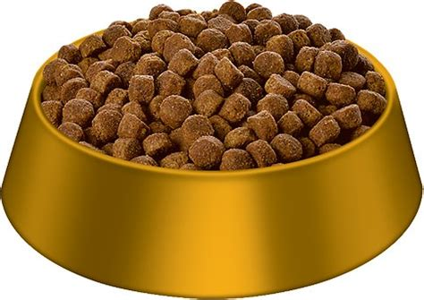 hills science diet puppy large breed dry dog food  lb