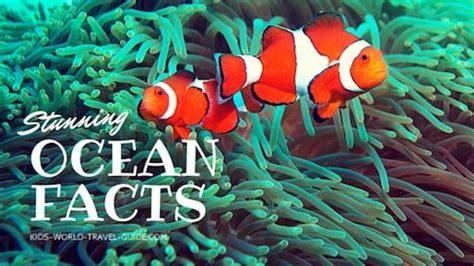 ocean trivia  kids trivia questions
