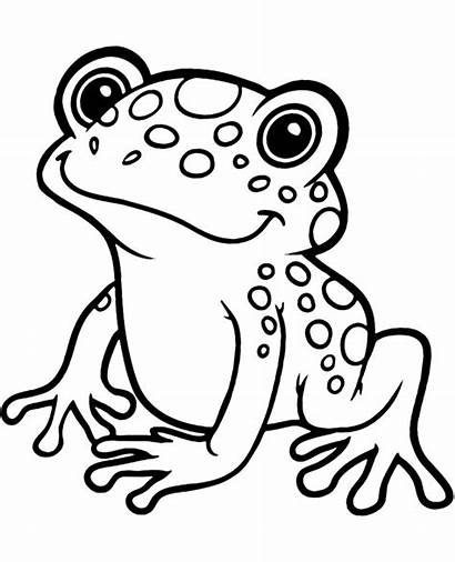 Frog Coloring Pages Exotic Printable Animals Easy