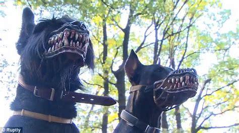 transforme  seu cachorrinho em um assustador lobisomem