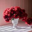 Bronson's Last Call: Valentine's Day Flowers | Valentine ...