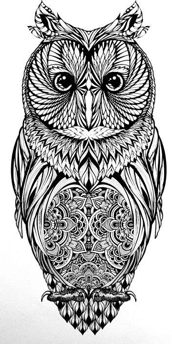 Pin by Christine Beetge on colouring pages | Owl coloring pages, Owl, Animal coloring pages