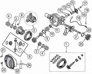 Diagram Assali  Albero Motore Jeep Wk  Wh Grand Cherokee