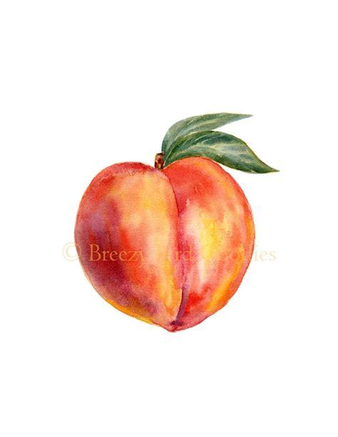peach print watercolour peach kitchen print watercolor