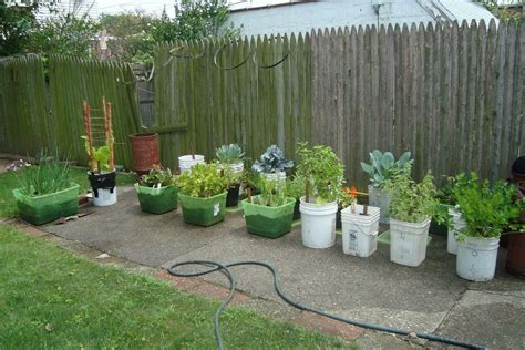 container vegetable gardening designing your container