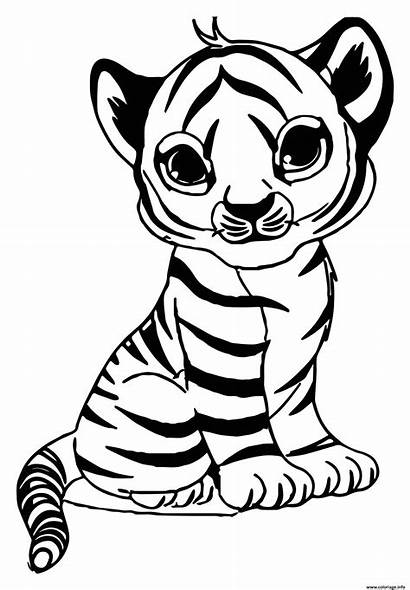 Coloriage Tigre Tiger Coloring Bebe Dessin Maternelle