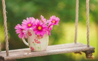 early spring desktop backgrounds hd  cute wallpapers