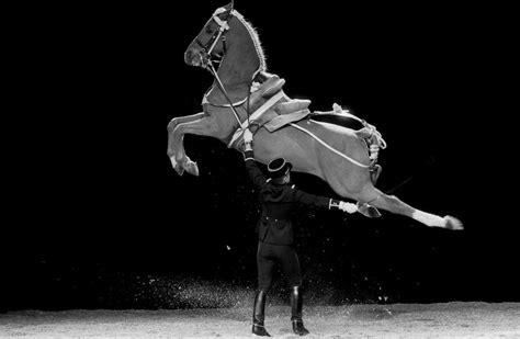 spectacle cadre noir de saumur le cadre noir de saumur 49 horaires de visite et tarifs tous les spectacles