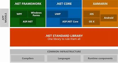 Library Core Standard Difference Between Project Stack