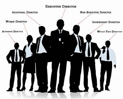 Directors Board Types Number Director Executive Provenience