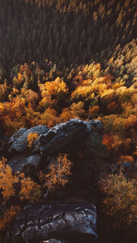 saxon switzerland trees  mountains iphone wallpaper