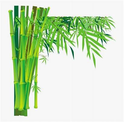 Bamboo Tree Transparent Cartoon Silhouette Netclipart