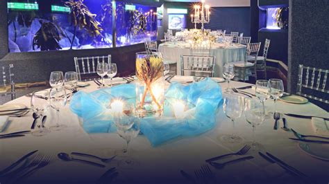 Party Boat Cape Town by Host Your Next Event At The Two Oceans Aquarium