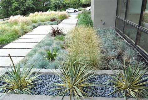 xeriscape ideas modern xeriscaping ideas for your outdoor space