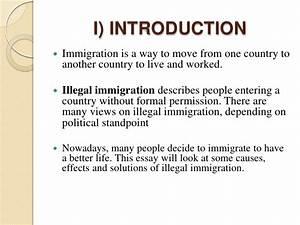Immigration Argumentative Essay Sample   Docoments Ojazlink