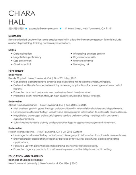 Professional Resume Summary by Professional Summary Resume Exles Tipsense Me