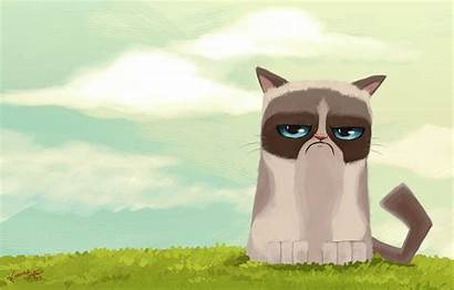 Cat Cartoon Grumpy Wallpapers Desktop Drawing Backgrounds