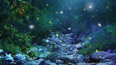 Desktop Wallpapers Magical Backgrounds Nexus Fireflies Getwallpapers