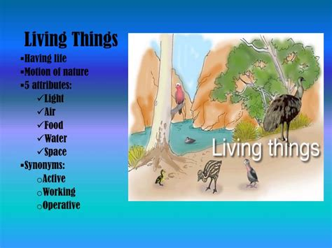 ppt how are living things different from nonliving things powerpoint presentation id 4423637