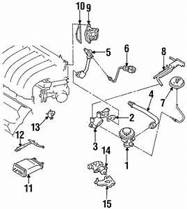 Fuel System Components For 1998 Nissan Maxima