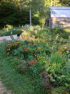Mixing, It, Up, -, Can, Edibles, And, Ornamentals, Get, Along, In, A, Designed, Garden