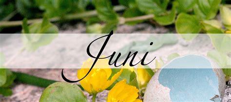 Juni, der Monat der Weiblichkeit - Practical Magic Magazin