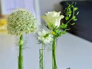 Reagenzgläser Für Blumen : diy reagenzglas vasen selber basteln kielerleben ~ A.2002-acura-tl-radio.info Haus und Dekorationen