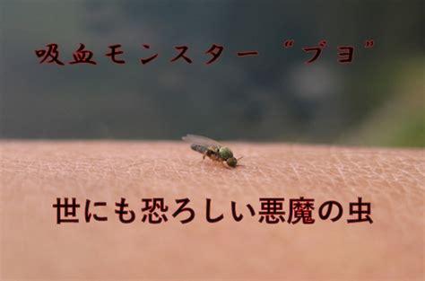まぶた 蚊に刺され 対処