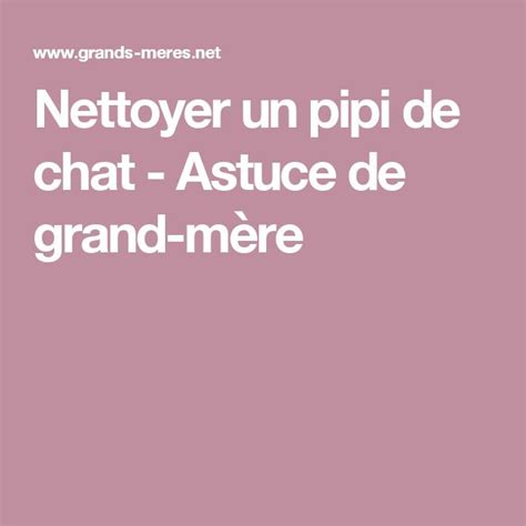 nettoyer pipi chat tapis nettoyer pipi de chat sur tapis 28 images nettoyer urine chat tapis plusieurs with nettoyer