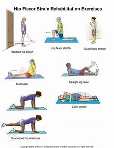 Hip Flexor Strain Exercises: Illustration - Hallmark ...