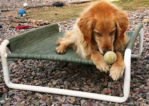the best luxury pet beds for your four legged friends With best dog bedding for outside
