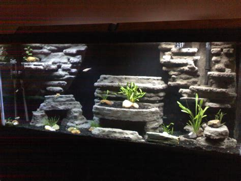 Diy Aquarium Background Diy Aquarium Background Www Pixshark Images