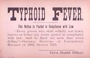 History - Typhoid Fever
