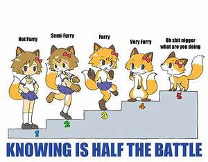 Scale Furry Scale Know Your Meme