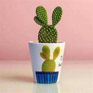 Pot A Cactus : personalised cactus plant pot by snapdragon ~ Farleysfitness.com Idées de Décoration