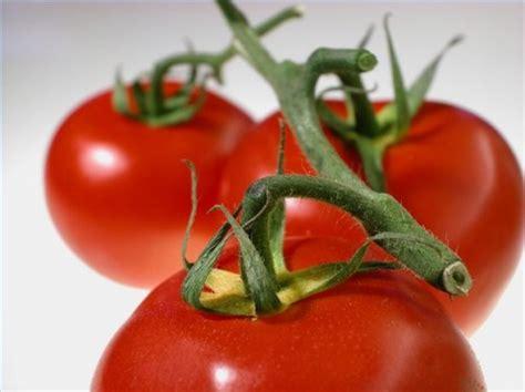 sintomi di allergia alimentare come sapere i sintomi di allergia pomodoro itsanitas