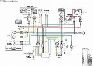 2002 Yamaha Warrior 350 Wiring Diagram