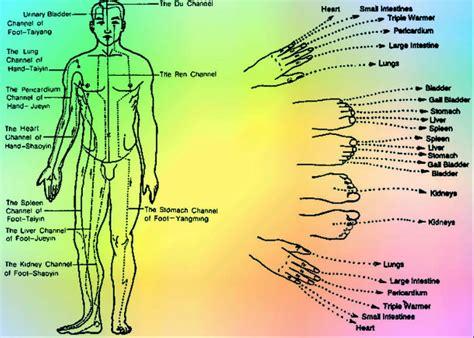 si e shiatsu massaggio shiatsu benefici a cosa fa bene endas lazio