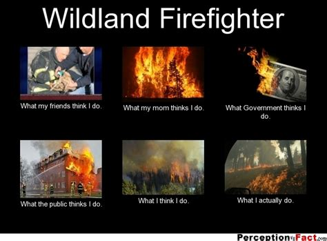 foto de Wildland Firefighter What people think I do what I