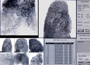 Image result for fingerprint evidence