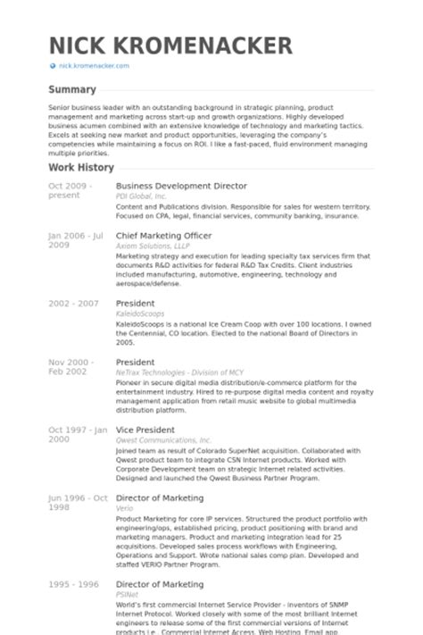 business development director resume sles visualcv