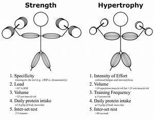 Resistance Exercise Training Variables Alongside Evidence