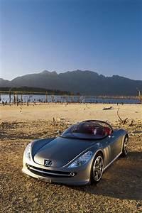 2000 Peugeot 607 Feline Concept car review @ Top Speed