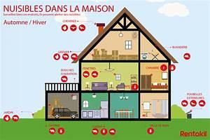 Arum Dans La Maison : nuisibles comment prot ger ma maison en hiver p1 ~ Melissatoandfro.com Idées de Décoration
