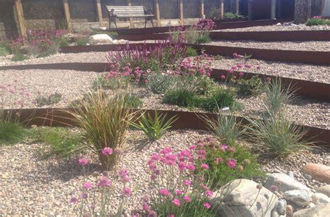 Seaside Garden Design Ideas coastal garden design by the seaside in brighton sussex